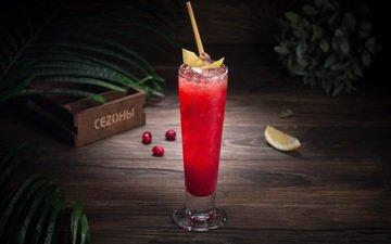 напиток, лёд, бокал, лимон, коктейль