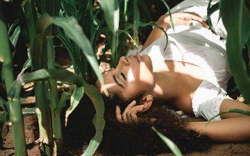 глаза, девушка, грудь, кукуруза, макияж, закрытые глаза, шикарная фигура