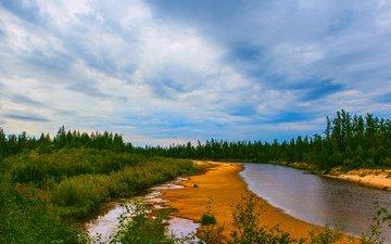 вода, река, природа, берег, зелень, лес, елки