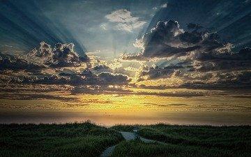 sunrise, the sun, nature, field
