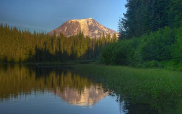 the sky, trees, lake, mountain, the volcano, vegetation, 100, coniferous forest