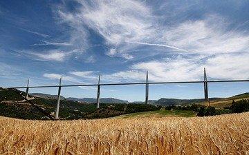 field, bridge, wheat, france, rye