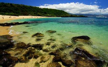 природа, камни, берег, пейзаж, песок, пляж, побережье, пальмы, океан, тропики