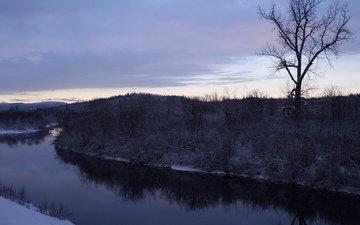 деревья, река, снег, зима