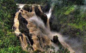 trees, river, fog, waterfall