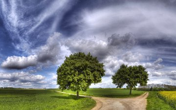the sky, road, grass, clouds, nature, greens, landscape, meadow