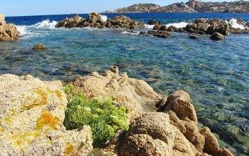rocks, nature, sea, italy, la maddalena