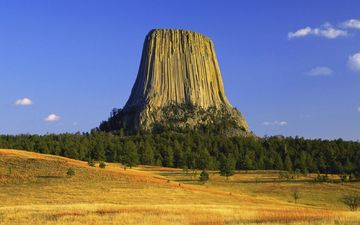 trees, autumn, usa, plateau, wyoming, devil's tower