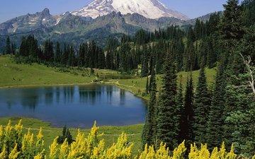 деревья, озеро, горы, природа, отражение, национальный парк