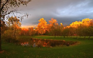 the sky, clouds, trees, nature, rays, autumn, crown