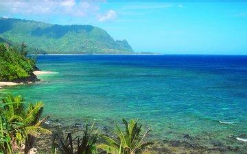 nature, shore, sea, rock, horizon, the ocean, usa, bay, hawaii, the hawaiian islands