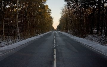 road, forest, winter, markup, sign