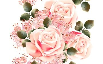 flowers, texture, background, roses, white