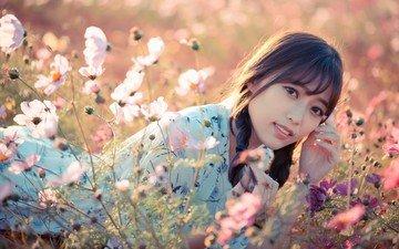 красавица, девочки, полевые цветы, на природе, красива, открытый, хорошенькая, азиат