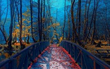 река, парк, листва, мост, осень, босния, mevludin, sejmenovic