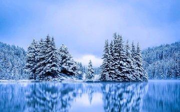 деревья, озеро, зима, канада, альберта, национальный парк банф, two jack lake, ту джек