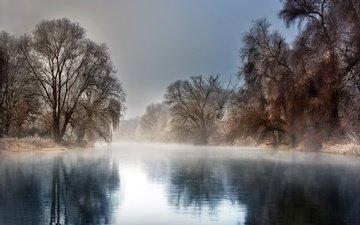 деревья, река, природа, зима, отражение, пейзаж, туман, мороз, иней