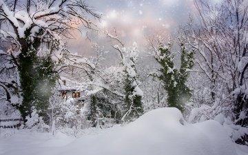 деревья, снег, природа, зима, пейзаж, дом, сугробы, снегопад, болгария