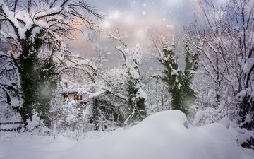 trees, snow, nature, winter, landscape, house, the snow, snowfall, bulgaria