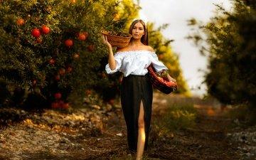 trees, girl, mood, garden, skirt, harvest, blouse, the cut, grenades, basket, mariia, alex darash, mary moselle
