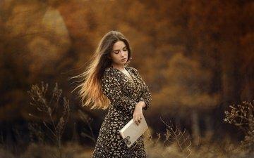 nature, girl, dress, butterfly, book