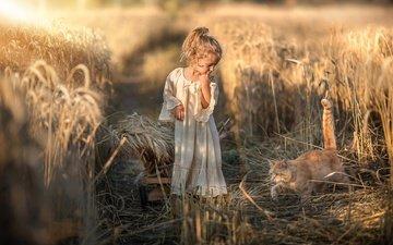 nature, dress, cat, field, girl, ears, animal, truck