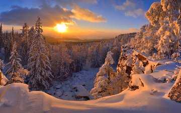 snow, forest, sunset, winter