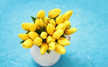 flowers, bouquet, tulips, yellow, fresh, spring