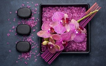 sticks, orchids, salt
