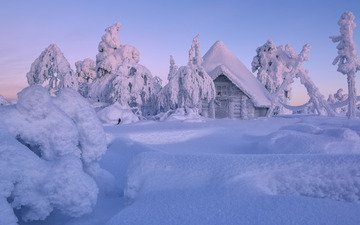 trees, snow, winter, house, the snow, hut, finland, lapland