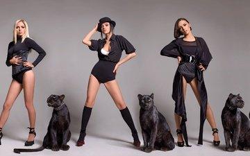группа, девушки, серый фон, пантера, кошки, девочки, серебро, нарядная, шляпа, платья, блака, музыкальная, serebro, серебреный, нарядные, переодевается, музыкa, черное фон, прически, вокалист, исполнительницы, крутые
