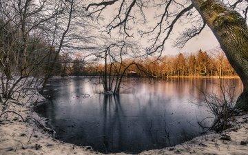 lake, winter, morning