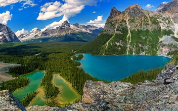 mountains, forest, lake