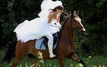 horse, girl, dress, jump, veil, runs, riding