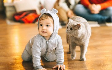 cat, child, baby