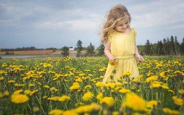 цветы, природа, настроение, девочка, луг, одуванчики