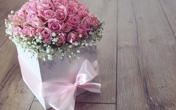 flowers, roses, bouquet, pink, tape, gift, box, flower