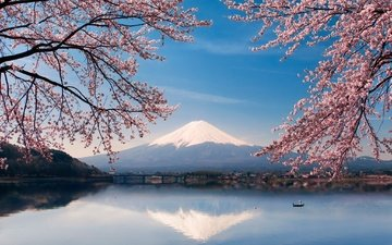 flowers, water, lake, mountain, japan, boat, spring, sakura, fuji