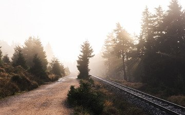road, railroad, nature, fog