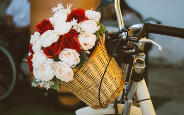 mood, roses, bouquet, basket, bike