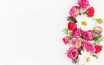 flowers, background, roses, white, bouquet