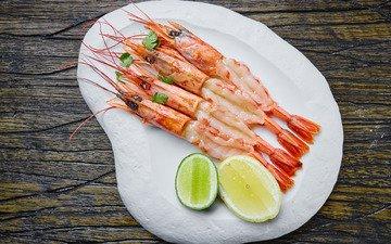 lemon, seafood, shrimp