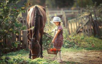 лошадь, девочка, корзина, рябина