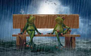 sea, the moon, rain, bench, photo manipulation, puppet, birds in the sky, frogs