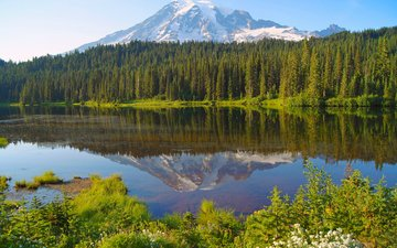 озеро, лес, гора, канада