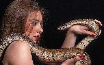 девушка, ситуация, змея