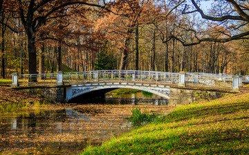 деревья, река, листья, парк, мост, осень, на природе, красочная, дерево