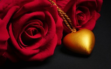 flowers, rose, red, heart, black background, romantic, pendant, roses, love