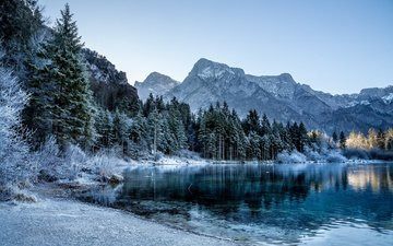 trees, lake, mountains, winter, ate