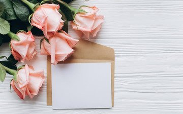 flowers, roses, paper, bouquet, the envelope